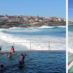 Bassins et piscines d'eau de mer protégeant les baigneurs du courant et des requins