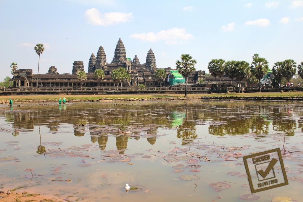 Le canard pataugeant dans l'un des bassins devant le temple de Angkor Wat