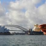 Le canard sur le Harbour Bridge contemplant l'opéra de Sydney