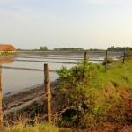 Marais salants de Kampot