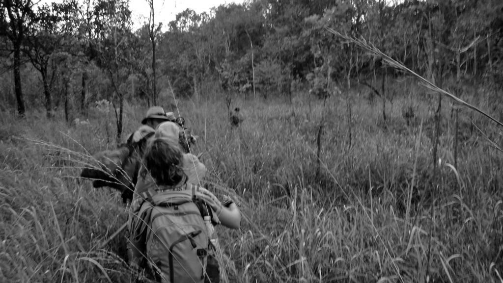 En file indienne derrière notre guide qui ouvre la voie à la machette