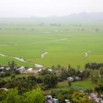 Rizières et frontière cambodgienne depuis le mont Sam