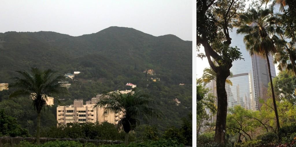 Quand la nature et le béton se rencontre à Hong Kong