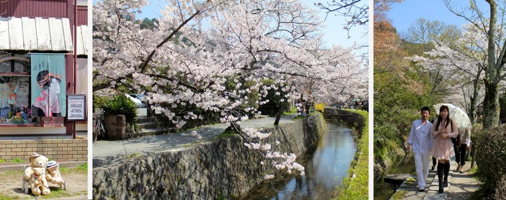 Sur la chemin des philosophes à Kyoto pour contempler la floraison des cerisiers