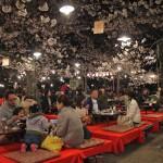 Repas sous les cerisiers en fleur au parc Maruyama-koen à Kyoto