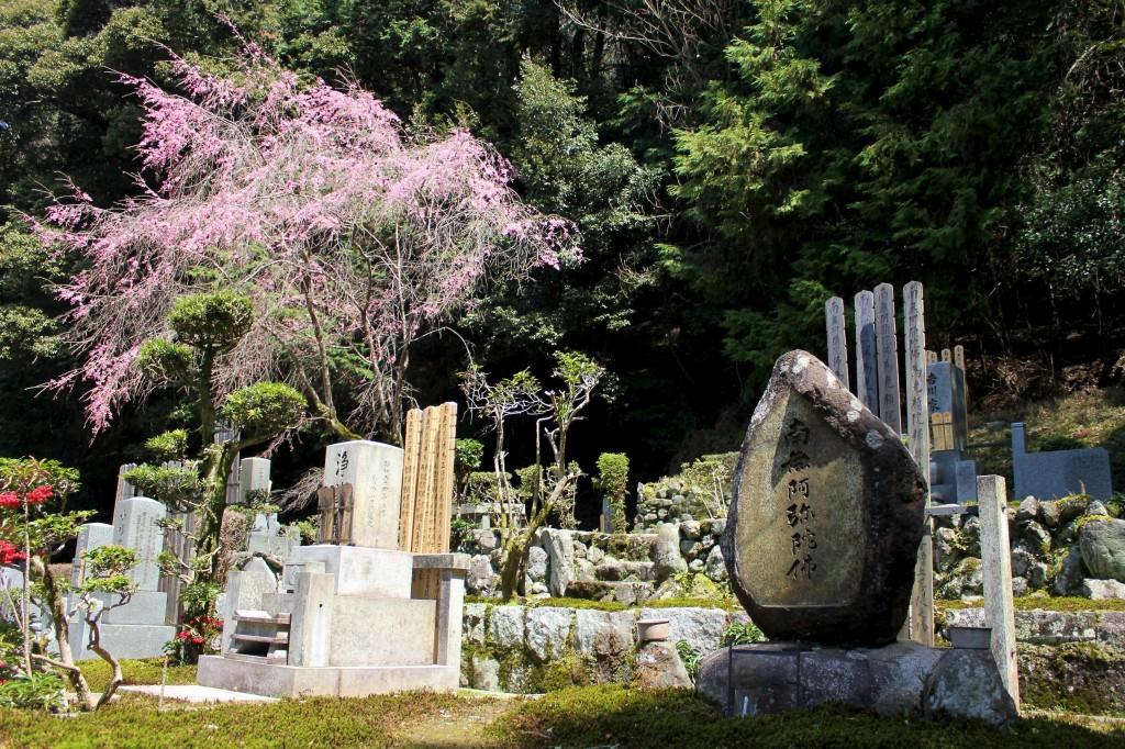 Cimetière japonais à Kyoto