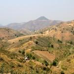 Paysages montagneux et plantations de thé