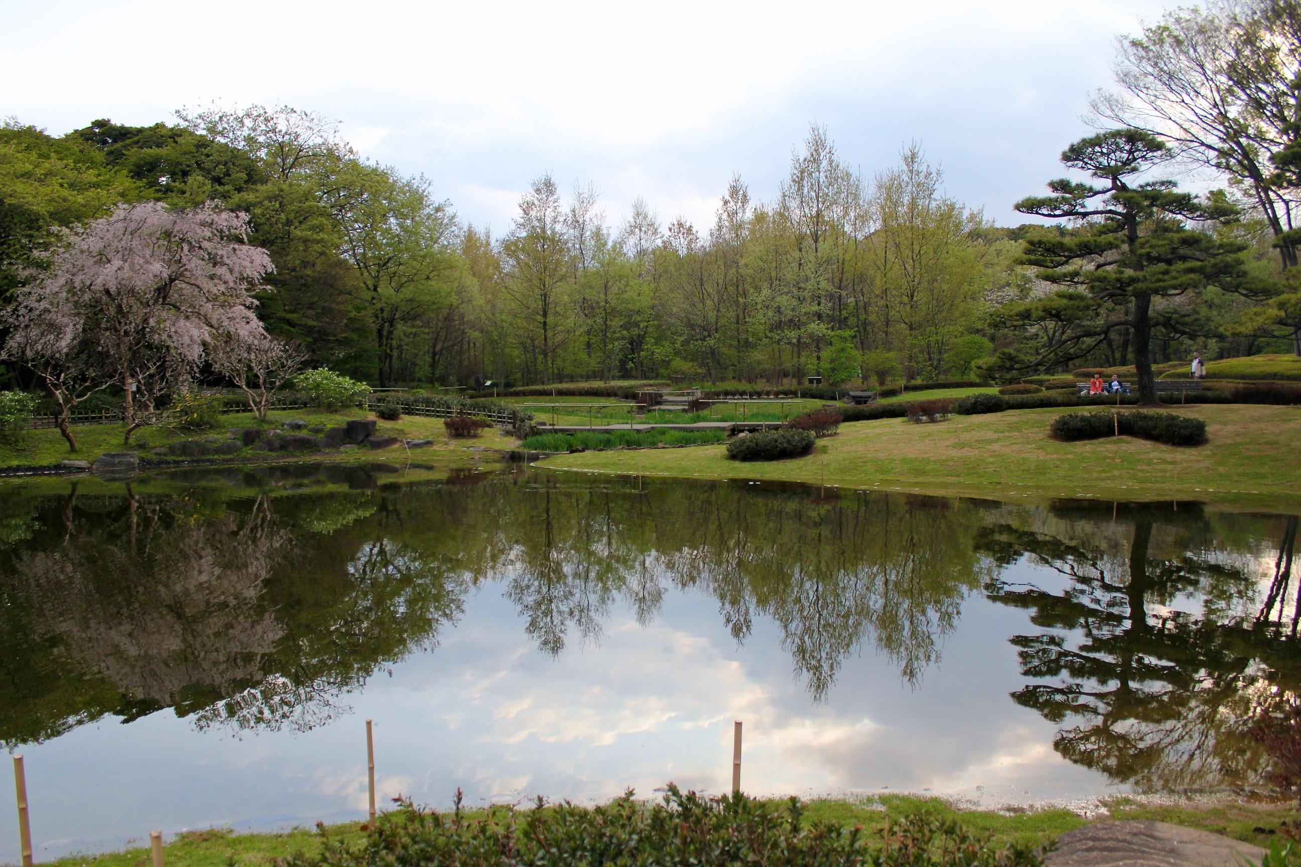 Dans le jardin oriental du palais imp rial for Planificateur jardin