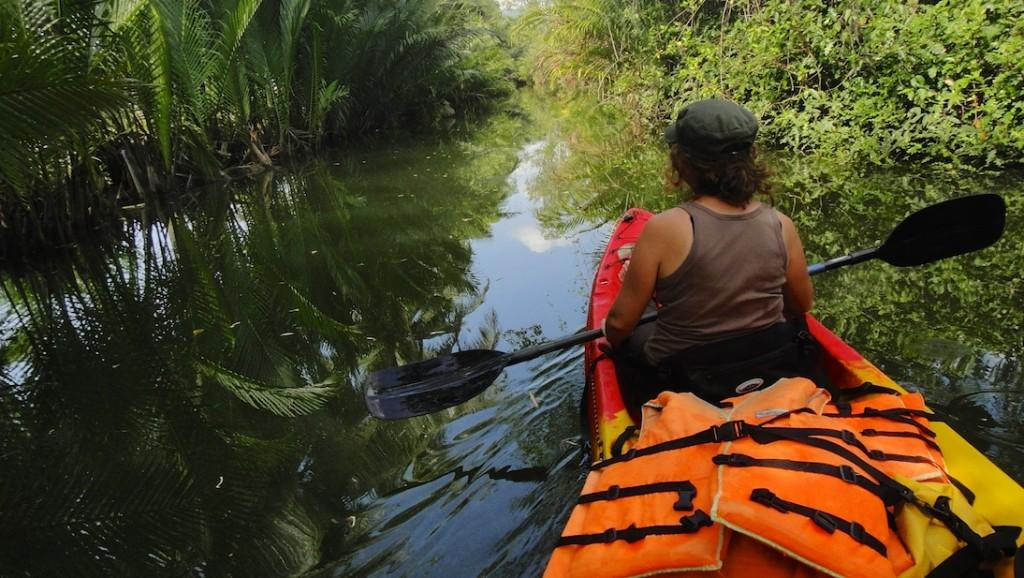 Au milieu de la mangrove à Kampot en kayak
