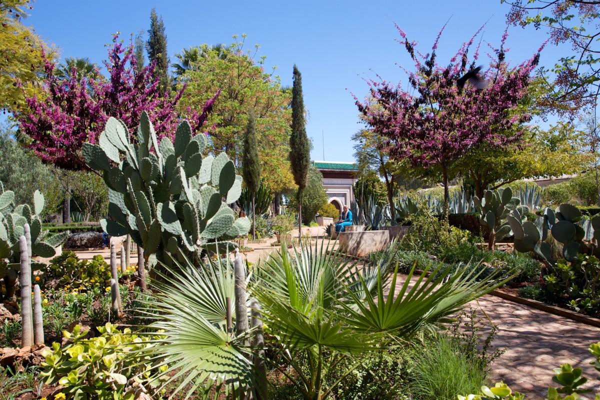 Jardin jnan sbil spot de pique nique idyllique for Planificateur jardin