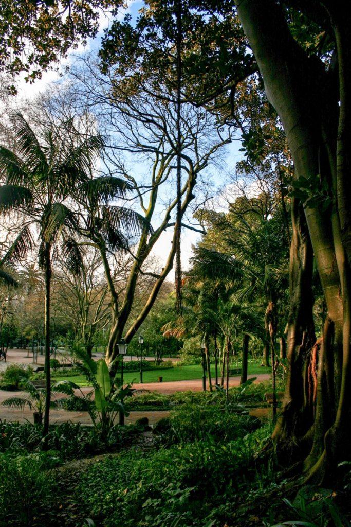 Lisbonne: Parc d'Estrela (Jardim da Estrêla)