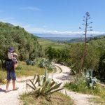 Le site de Segeste au coeur de l'arrière pays de la côte nord-ouest de la Sicile