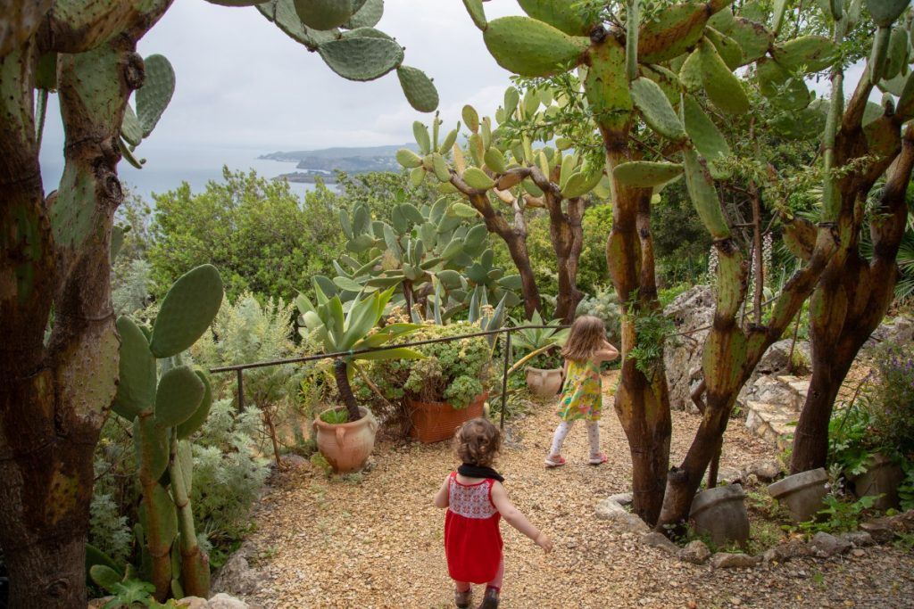 Jardin d'un Airbnb inattendu à Zingaro