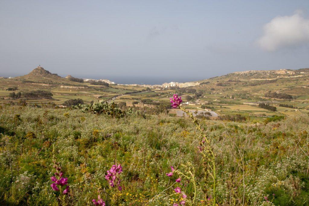 En route pour Marsalform, petite station balnéaire et de plongée de Gozo
