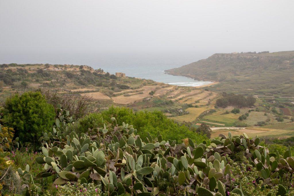 Randonner sur les sentiers côtiers à Gozo : de Xaghra à Ramla Bay