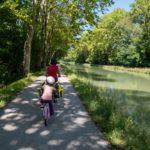 Sous les platanes le long du Canal de la Garonne