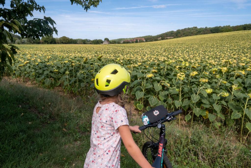 Un voyage à vélo contemplatif